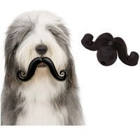 Mini Humunga Stache Ball Dog Toy