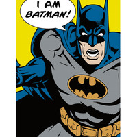 DC Comics I Am Batman! Poster