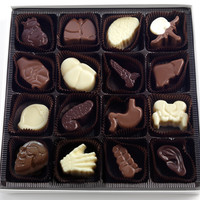 Visual Anatomy Limited : 16 Piece Assorted Chocolate Box : Anatomically Correct Doctors Medical Organs Chocolates Gifts Boxes Columbus Ohio
