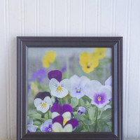 Framed Flower Photography Print, Purple Pansies Photo, Cottage Home Floral Decor