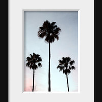 California art palm tree decor Los Angeles art southwestern decor palm print nature photography wall decor palm tree art 4x6 5x7 6x8 8x11
