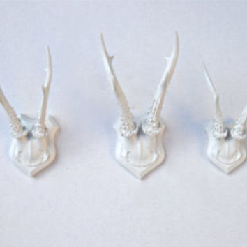 Large Faux Taxidermy Deer Antler Mount - Gold plaque And Antlers  - Unique Fake Resin Decor - Animal Friendly Wall Art - HT0808
