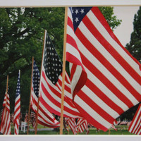 5 x 7 matted photo, American Flags, USA, patriotic