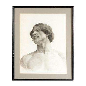 Pre-owned Life Study Male Torso Framed