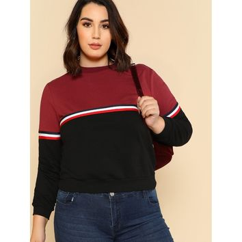 Striped Tape Detail Two Tone Pullover