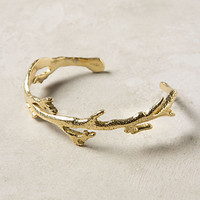 Anthozoa Bangle