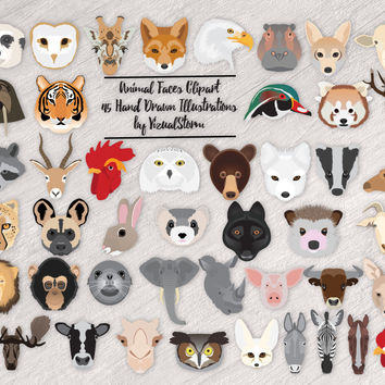 Animal Faces Clipart Bundle 45 Animal Heads Farm Jungle Zoo Endangered Safari Desert Bird Woodland African Sea Life Animal Scrapbook Clipart
