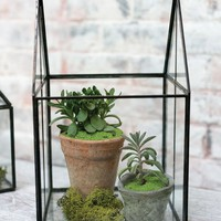 "Glass Geometric House Terrarium Container - 8"" L x 8"" W x 13"" H"