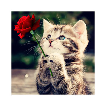 Needlework Red Rose And Cat 5D Diamond Embroidery Painting Animals Square Patterns Rhinestone Canvas Cross-Stitch Art Home Decor
