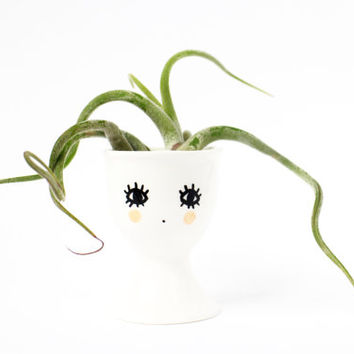 Egg Cup Tillandsia Holder Plant Air plant table decoration hand painted Illustration face breakfast egg holder kitchen deco home decoration