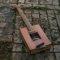 Raulo Luthier 100% hand made acoustic electric hollow fanned fret (opt) resonator cbg cigar box guitar
