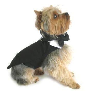 Black Dog Harness Tuxedo with Tails, Bow Tie, and Cotton Collar