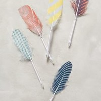 Feather Pen by Anthropologie Assorted One Size House & Home