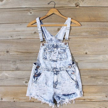 Backroads Distressed Overalls