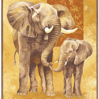 Mother Elephant with Young Art Print