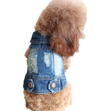 Stylish Denim Cotton Blend Dog Jacket