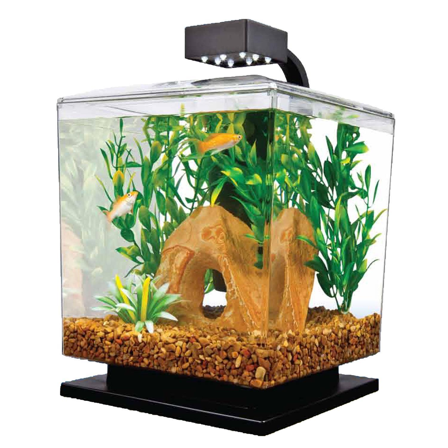 Tetra 1 5 gallon led desktop aquarium kit from for Black light for fish tank