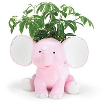 Sissy the Pink Elephant Poly-Resin Planter