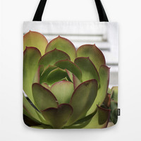 Red and Green Succulent Photo Tote Bag, Unfolding Landscape Desert Photograph