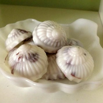 25 or 50 Nautilus Seashell Soaps, Perfect for Beach Wedding Favors
