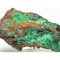 Green Malachite Botryoidal and Fibrous Crystals Mineral Specimen