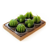 Succulent Cactus Candles