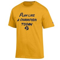 Champion Notre Dame Fighting Irish Tee