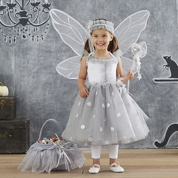 Toddler Silver Fairy Costume | Pottery Barn Kids