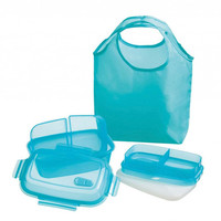 Reuseit Steaming Divided Lunch Container and Tote