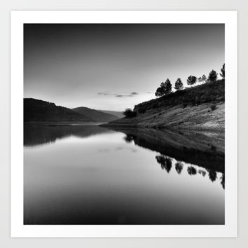 Forest Reflection Bw Art Print by Guido Montañés