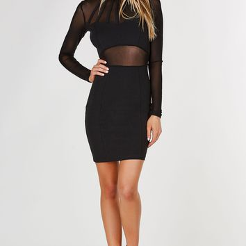 Private Party Mesh Dress
