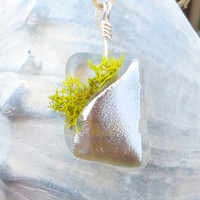 Fused Glass Terrarium Pendant Necklace