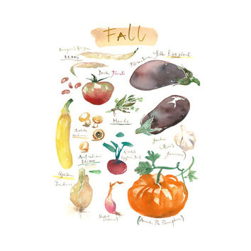 Fall vegetable art print, Heirloom vegetables watercolor poster, 8X10, Kitchen art, Food painting, Garden, Home decor Seasonal, Plant poster