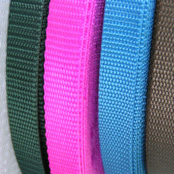 1/2 Forest Green, Fuchsia, Sky Blue, Chocolate Brown, Narrow Nylon Webbing, A lovely webbing style with many uses. Standard Weight
