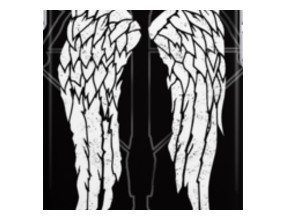 Daryl Dixon wings crossbow iPhone Cases & Skins