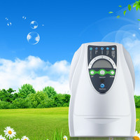 Household Ozone Disinfection Disinfector Ozone Generator Air Purifier Clean Room Chemical Detoxification Food Safety Ozonizer