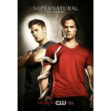 Supernatural 11x17 TV Poster (2005)