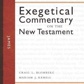 James Zondervan Exegetical Commentary on the New Testament