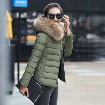 Women's Winter Jackets and Coats 2017 Women Parks Thick Warm Faux Fur Collar Hood Anorak ladies Jacket Female Manteau