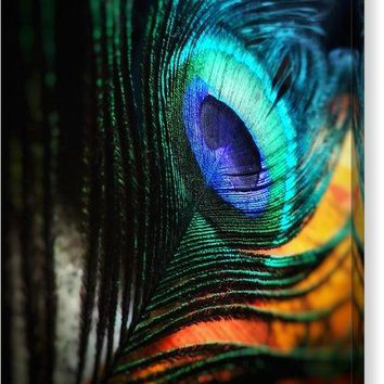 Peacock - Canvas Print