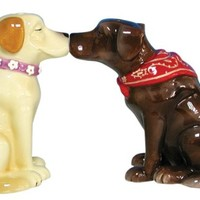 Westland Giftware Mwah Magnetic Labrador Retrievers Salt and Pepper Shaker Set, 3-1/4-Inch