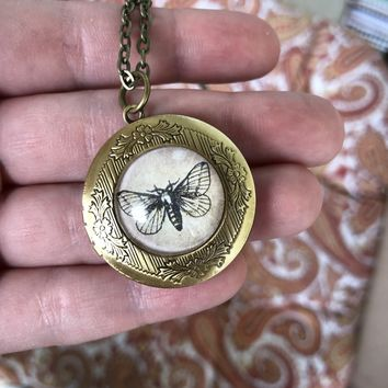 Moth Locket Necklace