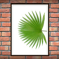 Tropical Leaf Print, Green Palm Art, Palm Art, Palm Leaves, Art Photo, Tropical Prints, Palm Leaf Prints, Tropical Decor, Green Decor *2*