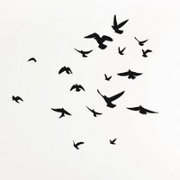 Amazon.com: Flock of Birds wall decal sticker: Home & Kitchen