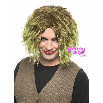Dark Knight Joker -Green Full Wig