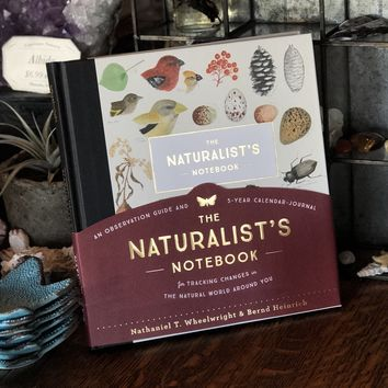 The Naturalist's Notebook by Nathaniel T. Wheelwright and Bernd Heinrich