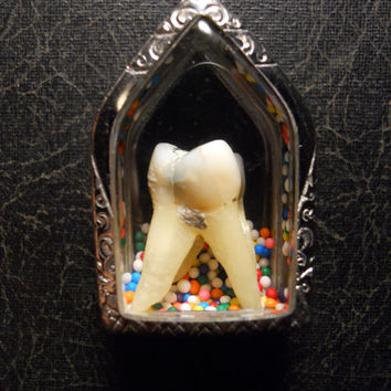 Sweet Tooth Real Human Tooth in Candy Sprinkle Necklace Bubble