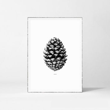 Pine Cone Print, Nature Poster, Printable Pine Cone, Botanical Print,  Black and White Print, Scandinavian Print, Affiche Scandinavian