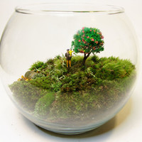 Open Bowl Terrarium: Dad, Child, and Cherry Blossoms