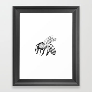 Honey Bee Framed Art Print by Hailey Johnson